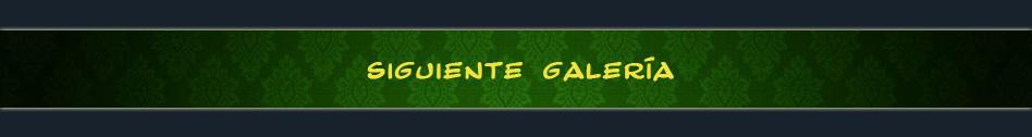 SIGUIENTE_ GALERIA