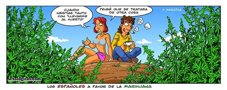10.Los españoles a favor de la marihuana